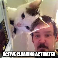 Adaptive camouflage | ACTIVE CLOAKING ACTIVATED | image tagged in cat,funny,optical illusion,jedi mind trick | made w/ Imgflip meme maker