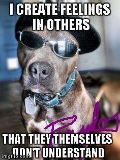 "Whether you love my memes or hate them, one thing the ""haters"" have made plain to see... 