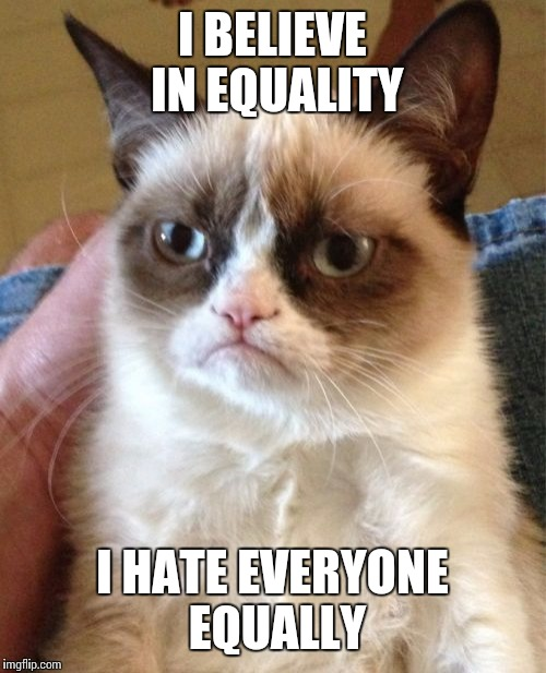 Grumpy Cat Meme | I BELIEVE IN EQUALITY I HATE EVERYONE EQUALLY | image tagged in memes,grumpy cat | made w/ Imgflip meme maker