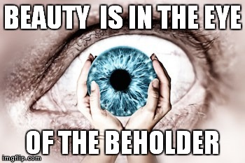 beauty | BEAUTY  IS IN THE EYE OF THE BEHOLDER | image tagged in beauty | made w/ Imgflip meme maker