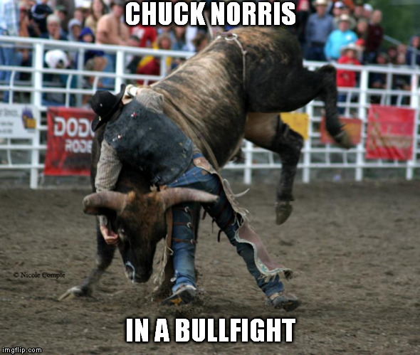 Chuck don't take no bull | CHUCK NORRIS IN A BULLFIGHT | image tagged in meme,bullfighting,chuck norris | made w/ Imgflip meme maker