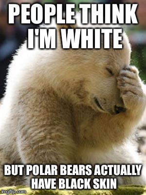Facepalm Bear | PEOPLE THINK I'M WHITE BUT POLAR BEARS ACTUALLY HAVE BLACK SKIN | image tagged in memes,facepalm bear | made w/ Imgflip meme maker