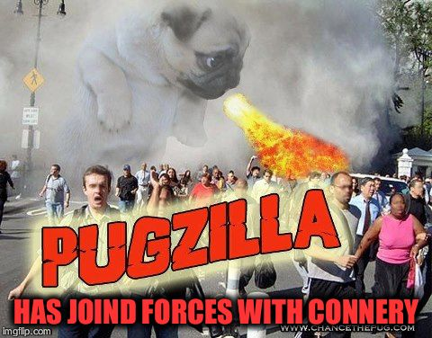 Pugzilla | HAS JOIND FORCES WITH CONNERY | image tagged in pugzilla | made w/ Imgflip meme maker