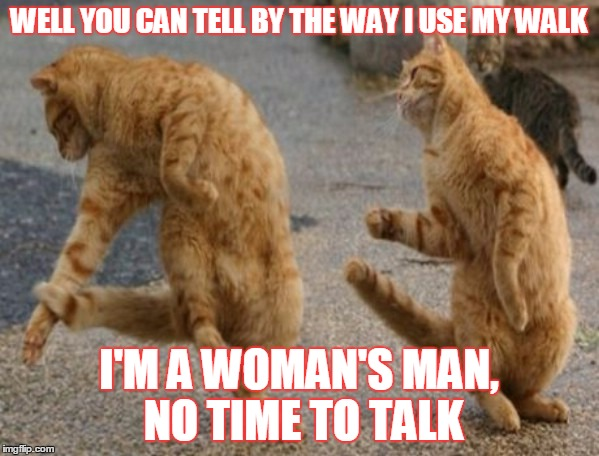 WELL YOU CAN TELL BY THE WAY I USE MY WALK I'M A WOMAN'S MAN, NO TIME TO TALK | made w/ Imgflip meme maker