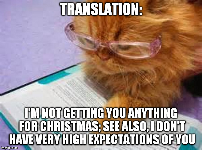TRANSLATION: I'M NOT GETTING YOU ANYTHING FOR CHRISTMAS; SEE ALSO, I DON'T HAVE VERY HIGH EXPECTATIONS OF YOU | made w/ Imgflip meme maker
