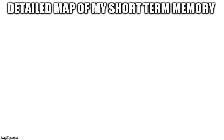 DETAILED MAP OF MY SHORT TERM MEMORY | made w/ Imgflip meme maker