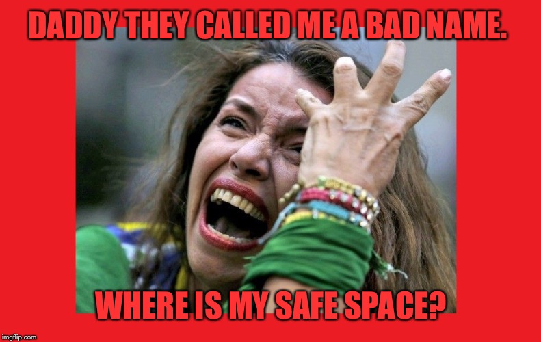 write a thon safe space meme