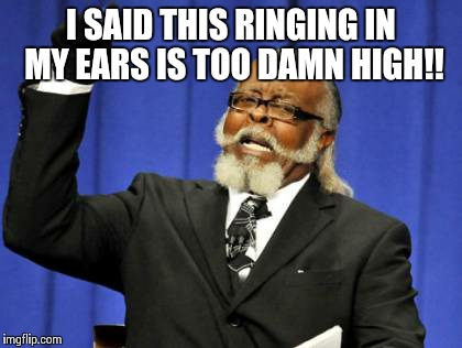 Too Damn High Meme | I SAID THIS RINGING IN MY EARS IS TOO DAMN HIGH!! | image tagged in memes,too damn high | made w/ Imgflip meme maker