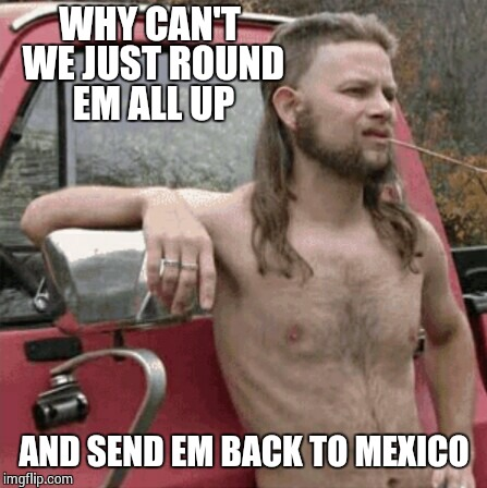 WHY CAN'T WE JUST ROUND EM ALL UP AND SEND EM BACK TO MEXICO | made w/ Imgflip meme maker