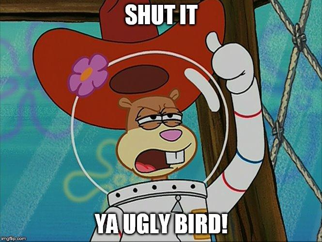 Sandy Cheeks Shut It Ya Ugly Bird! - Imgflip