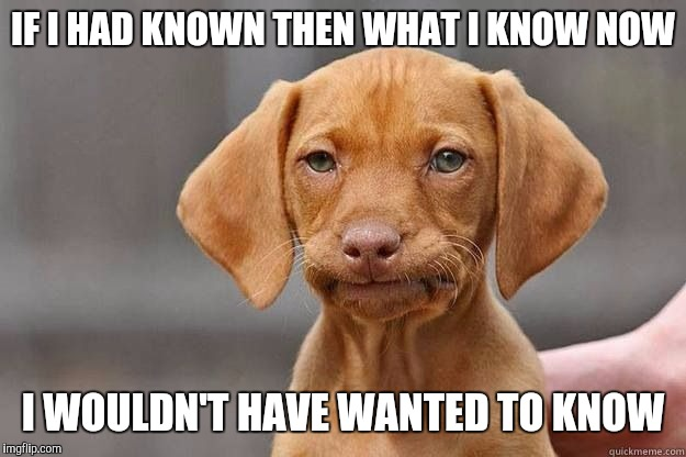 Disapointed Dog | IF I HAD KNOWN THEN WHAT I KNOW NOW I WOULDN'T HAVE WANTED TO KNOW | image tagged in disapointed dog,memes,funny memes,meme,funny meme | made w/ Imgflip meme maker