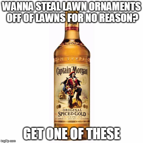 Get One of These | WANNA STEAL LAWN ORNAMENTS OFF OF LAWNS FOR NO REASON? GET ONE OF THESE | image tagged in memes,funny,captain morgan,alcohol,rum | made w/ Imgflip meme maker