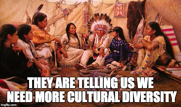 THEY ARE TELLING US WE NEED MORE CULTURAL DIVERSITY | image tagged in diversity,indians,immigration | made w/ Imgflip meme maker