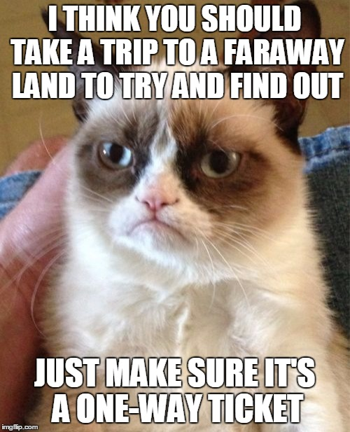 Grumpy Cat Meme | I THINK YOU SHOULD TAKE A TRIP TO A FARAWAY LAND TO TRY AND FIND OUT JUST MAKE SURE IT'S A ONE-WAY TICKET | image tagged in memes,grumpy cat | made w/ Imgflip meme maker