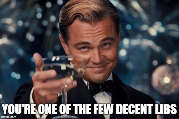 Leonardo Dicaprio Cheers Meme | YOU'RE ONE OF THE FEW DECENT LIBS | image tagged in memes,leonardo dicaprio cheers | made w/ Imgflip meme maker