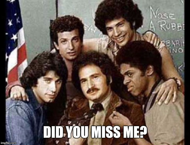 DID YOU MISS ME? | image tagged in welcome back kotter,john travolta,70s tv | made w/ Imgflip meme maker