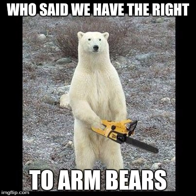 Chainsaw Bear Meme | WHO SAID WE HAVE THE RIGHT TO ARM BEARS | image tagged in memes,chainsaw bear | made w/ Imgflip meme maker