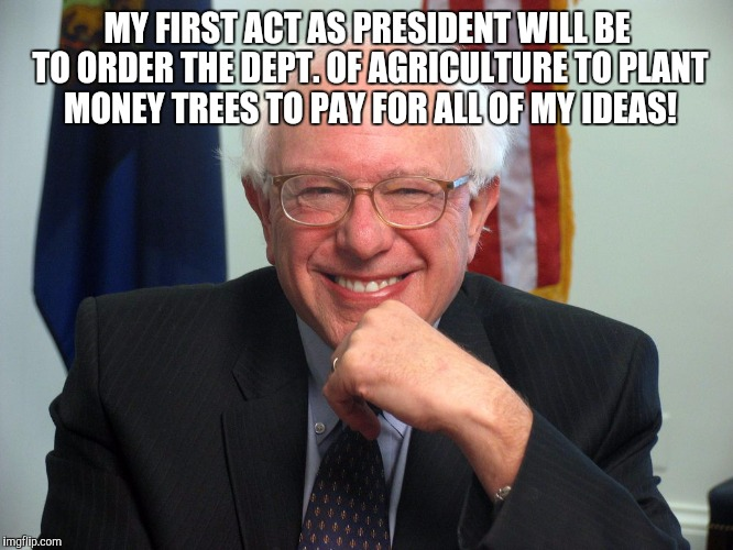 Vote Bernie Sanders | MY FIRST ACT AS PRESIDENT WILL BE TO ORDER THE DEPT. OF AGRICULTURE TO PLANT MONEY TREES TO PAY FOR ALL OF MY IDEAS! | image tagged in vote bernie sanders | made w/ Imgflip meme maker