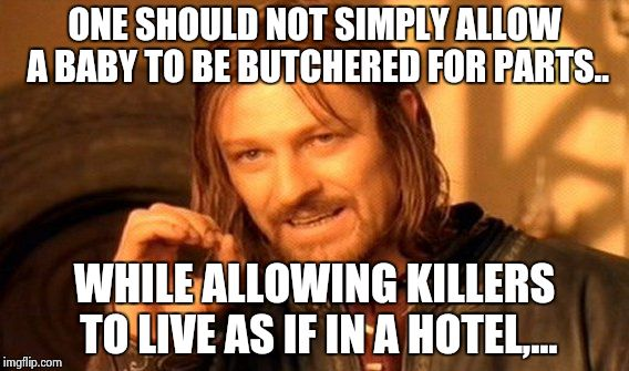 One Does Not Simply Meme | ONE SHOULD NOT SIMPLY ALLOW A BABY TO BE BUTCHERED FOR PARTS.. WHILE ALLOWING KILLERS TO LIVE AS IF IN A HOTEL,... | image tagged in memes,one does not simply | made w/ Imgflip meme maker