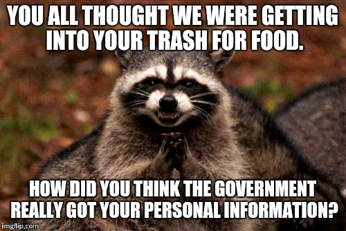 Evil Plotting Raccoon Meme | YOU ALL THOUGHT WE WERE GETTING INTO YOUR TRASH FOR FOOD. HOW DID YOU THINK THE GOVERNMENT REALLY GOT YOUR PERSONAL INFORMATION? | image tagged in memes,evil plotting raccoon | made w/ Imgflip meme maker