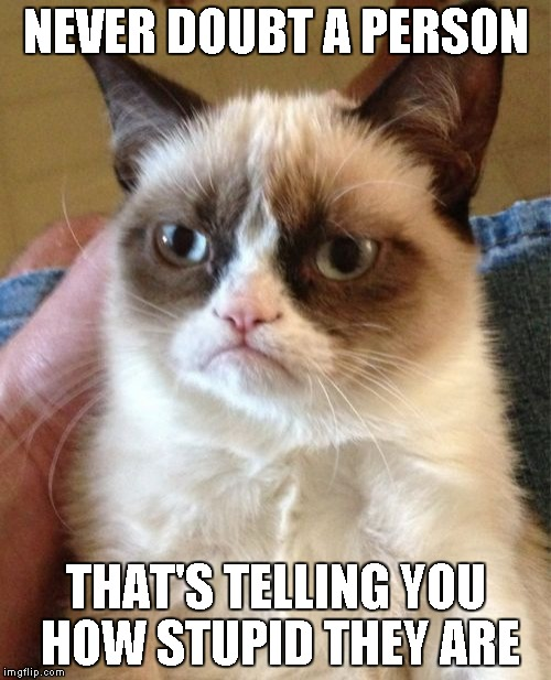 Grumpy Cat Meme | NEVER DOUBT A PERSON THAT'S TELLING YOU HOW STUPID THEY ARE | image tagged in memes,grumpy cat | made w/ Imgflip meme maker