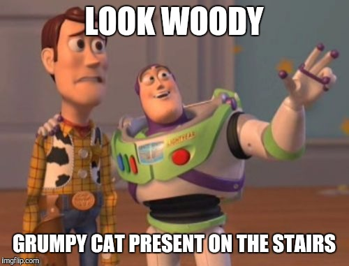 X, X Everywhere Meme | LOOK WOODY GRUMPY CAT PRESENT ON THE STAIRS | image tagged in memes,x, x everywhere,x x everywhere | made w/ Imgflip meme maker