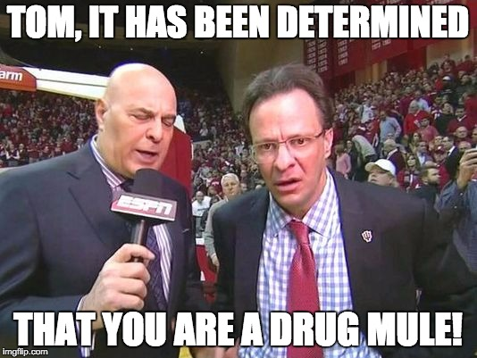 TOM, IT HAS BEEN DETERMINED THAT YOU ARE A DRUG MULE! | image tagged in crean | made w/ Imgflip meme maker