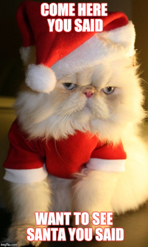 Grumpy Cat Christmas Memes.Image Tagged In Grumpy Cat Christmas Santa Cats Cute Memes