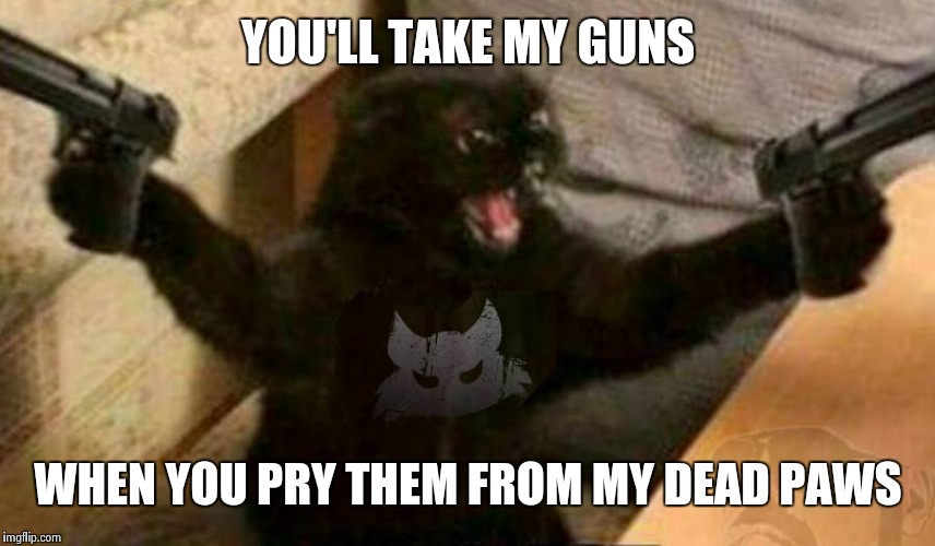 Cat With Guns | YOU'LL TAKE MY GUNS WHEN YOU PRY THEM FROM MY DEAD PAWS | image tagged in cat with guns | made w/ Imgflip meme maker