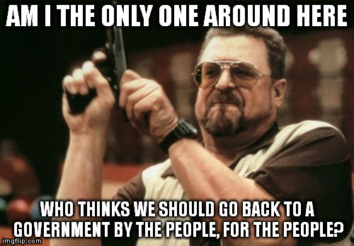 WE elect THEM, after all... | AM I THE ONLY ONE AROUND HERE WHO THINKS WE SHOULD GO BACK TO A GOVERNMENT BY THE PEOPLE, FOR THE PEOPLE? | image tagged in memes,am i the only one around here | made w/ Imgflip meme maker