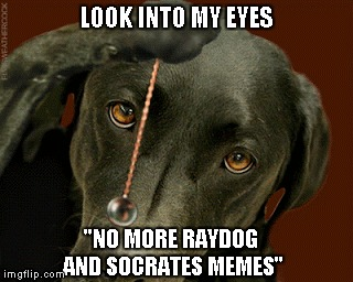 "I get the hypocrisy of me making this meme, but it does need to be said...I think everyone is getting tired of them. | LOOK INTO MY EYES ""NO MORE RAYDOG AND SOCRATES MEMES"" 