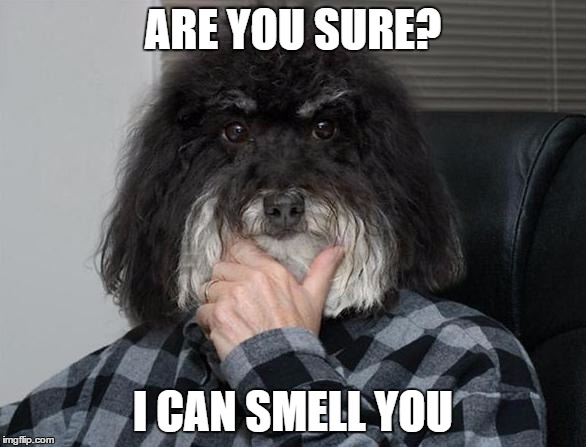ARE YOU SURE? I CAN SMELL YOU | made w/ Imgflip meme maker