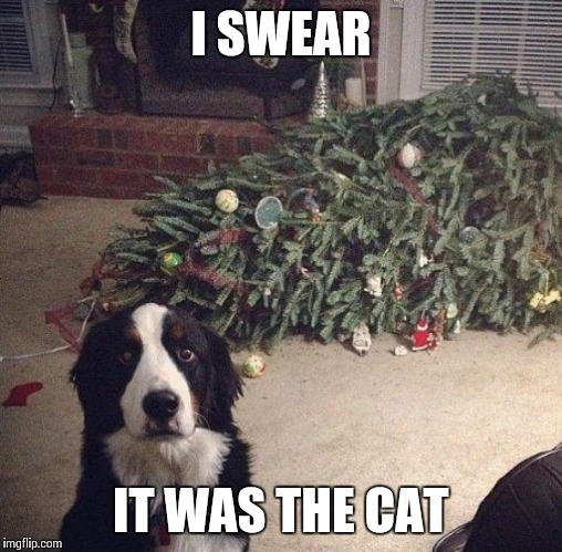 Dog Christmas Tree | I SWEAR IT WAS THE CAT | image tagged in dog christmas tree | made w/ Imgflip meme maker