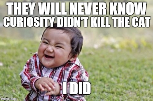 Evil Toddler Meme | THEY WILL NEVER KNOW CURIOSITY DIDN'T KILL THE CAT I DID | image tagged in memes,evil toddler | made w/ Imgflip meme maker