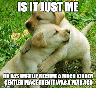 Can you feel the love tonight? | IS IT JUST ME OR HAS IMGFLIP BECOME A MUCH KINDER GENTLER PLACE THEN IT WAS A YEAR AGO | image tagged in puppy i love bro | made w/ Imgflip meme maker