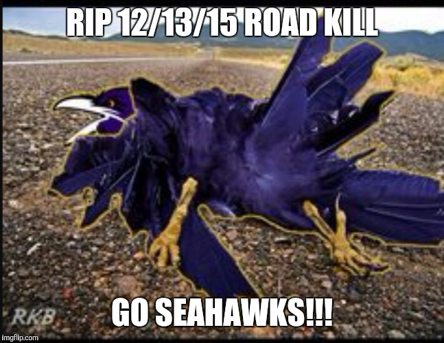 Ravens Road Kill | RIP 12/13/15 ROAD KILL GO SEAHAWKS!!! | image tagged in seattle seahawks | made w/ Imgflip meme maker