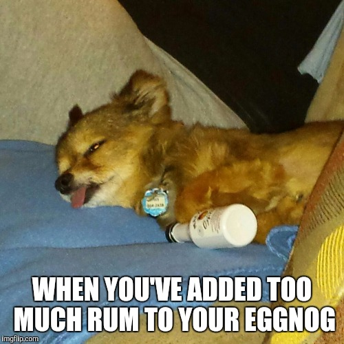 Too much cheer | WHEN YOU'VE ADDED TOO MUCH RUM TO YOUR EGGNOG | image tagged in drink,drunk dog,cheer,eggnog,christmas,rum | made w/ Imgflip meme maker