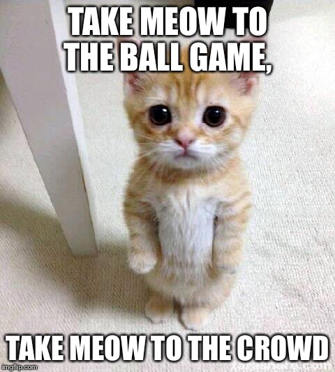 Cute Cat Meme | TAKE MEOW TO THE BALL GAME, TAKE MEOW TO THE CROWD | image tagged in memes,cute cat | made w/ Imgflip meme maker