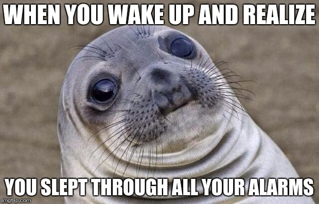 Awkward Moment Sealion | WHEN YOU WAKE UP AND REALIZE YOU SLEPT THROUGH ALL YOUR ALARMS | image tagged in memes,awkward moment sealion,sleep,alarm clock | made w/ Imgflip meme maker