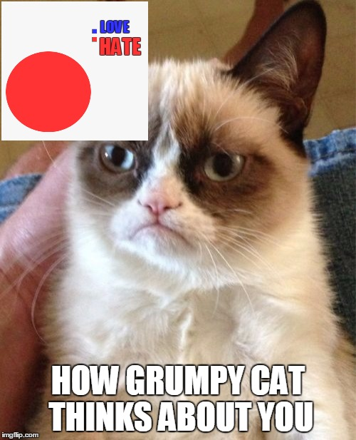 Do you want the bad news first, or the bad news first?  :) | LOVE HOW GRUMPY CAT THINKS ABOUT YOU HATE | image tagged in memes,grumpy cat,pie chart,love,hate,3d | made w/ Imgflip meme maker