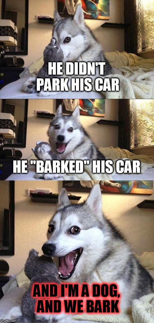 "HE DIDN'T PARK HIS CAR HE ""BARKED"" HIS CAR AND I'M A DOG, AND WE BARK 