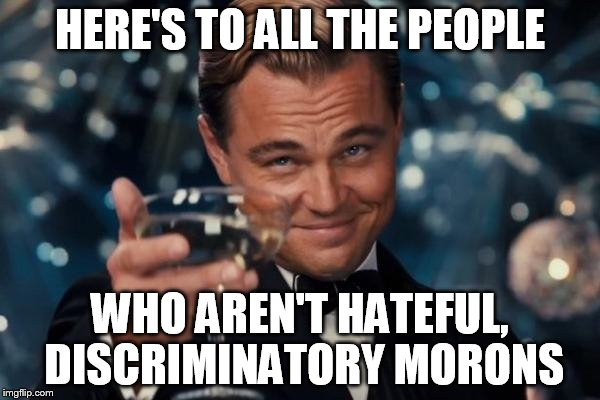 I appreciate people like this | HERE'S TO ALL THE PEOPLE WHO AREN'T HATEFUL, DISCRIMINATORY MORONS | image tagged in memes,leonardo dicaprio cheers | made w/ Imgflip meme maker