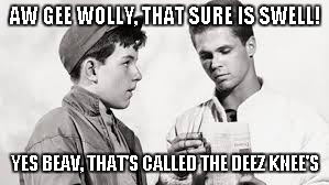 AW GEE WOLLY, THAT SURE IS SWELL! YES BEAV, THAT'S CALLED THE DEEZ KNEE'S | made w/ Imgflip meme maker
