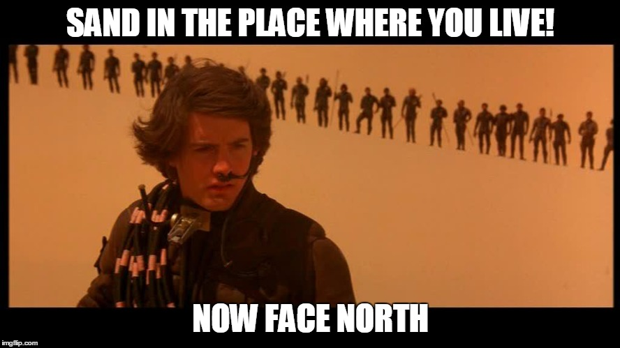 Sand in the place where you live | SAND IN THE PLACE WHERE YOU LIVE! NOW FACE NORTH | image tagged in rem,dune,stand | made w/ Imgflip meme maker