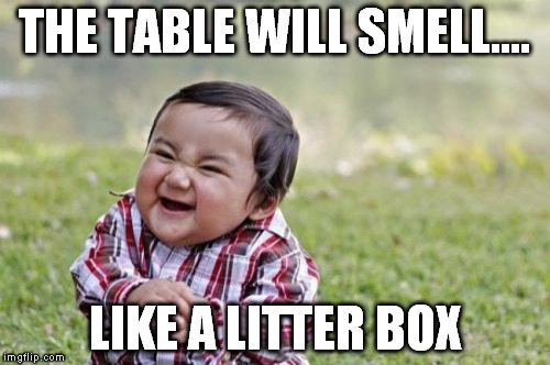 Evil Toddler Meme | THE TABLE WILL SMELL.... LIKE A LITTER BOX | image tagged in memes,evil toddler | made w/ Imgflip meme maker