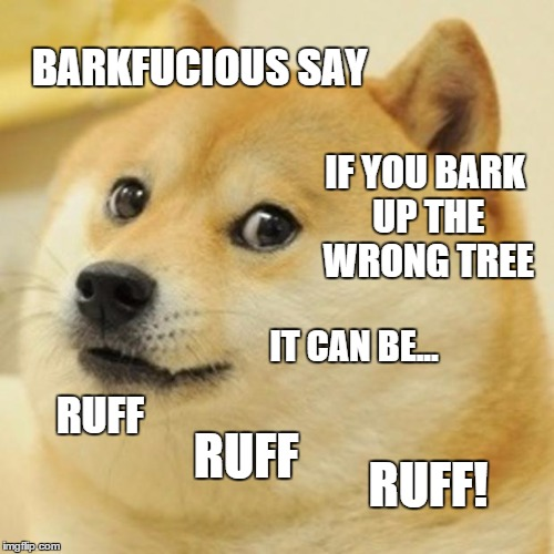 it surely can! | BARKFUCIOUS SAY IF YOU BARK UP THE WRONG TREE IT CAN BE... RUFF RUFF! RUFF | image tagged in memes,doge,philosophical dog,barkfucious | made w/ Imgflip meme maker