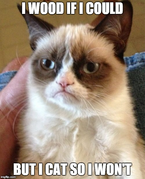 Grumpy Cat Meme | I WOOD IF I COULD BUT I CAT SO I WON'T | image tagged in memes,grumpy cat | made w/ Imgflip meme maker