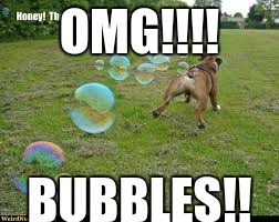 fart dog fart | OMG!!!! BUBBLES!! | image tagged in fart dog fart | made w/ Imgflip meme maker