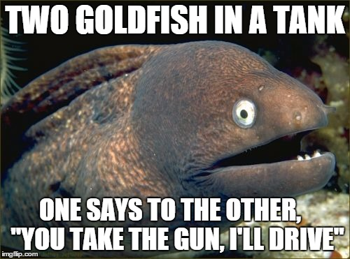 "Bad Joke Eel Meme | TWO GOLDFISH IN A TANK ONE SAYS TO THE OTHER,   ""YOU TAKE THE GUN, I'LL DRIVE"" 