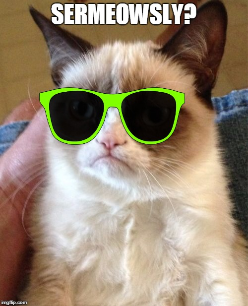 Grumpy Cat Meme | SERMEOWSLY? | image tagged in memes,grumpy cat | made w/ Imgflip meme maker